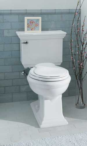 Toilet Buying Guide: